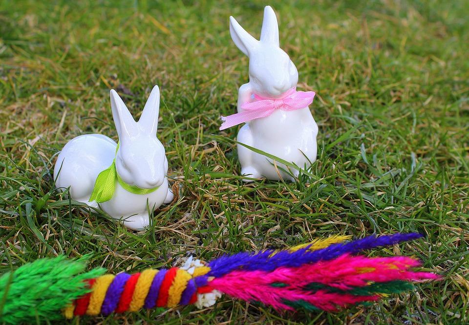 bunnies-3174969_960_720